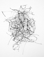 rhizomatic structure, ABS Filament, 3D Drawing, 2015
